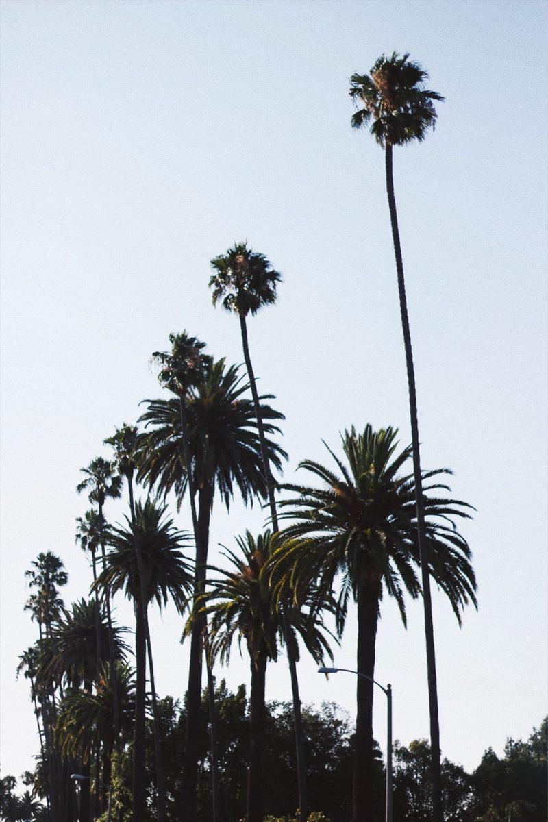 a week on the west coast
